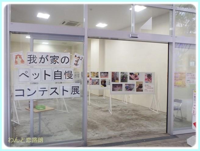 f:id:yasukazu01:20140719193853j:image