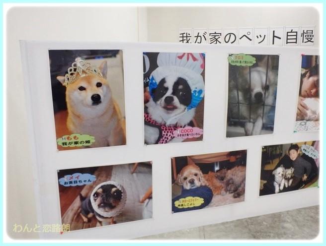 f:id:yasukazu01:20140719194430j:image