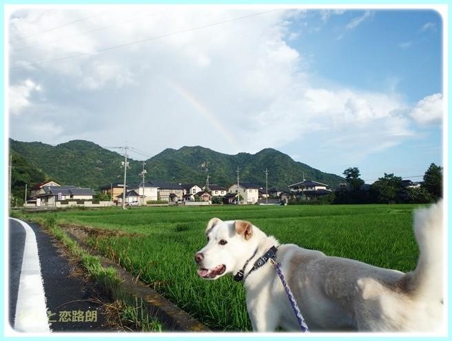 f:id:yasukazu01:20140721221145j:image