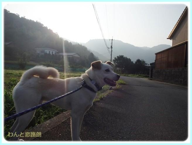 f:id:yasukazu01:20140722211828j:image