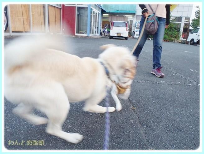 f:id:yasukazu01:20140723222704j:image