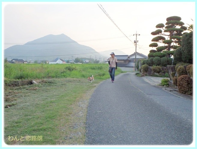 f:id:yasukazu01:20140724213125j:image