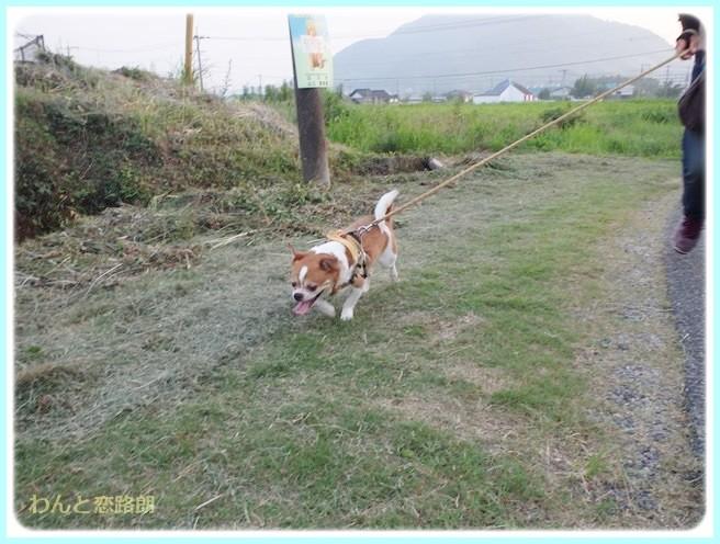f:id:yasukazu01:20140724213313j:image