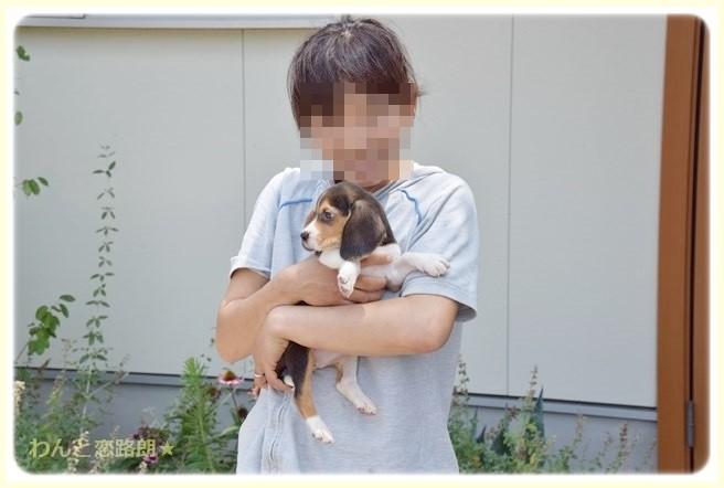 f:id:yasukazu01:20140728222559j:image