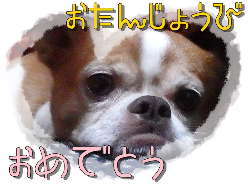 f:id:yasukazu01:20140801214451j:image