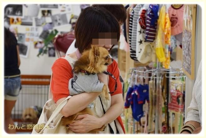 f:id:yasukazu01:20140804201457j:image