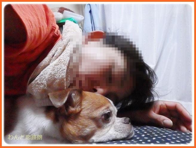 f:id:yasukazu01:20140806221542j:image