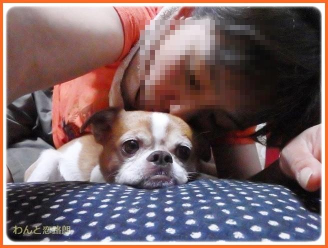 f:id:yasukazu01:20140806221936j:image