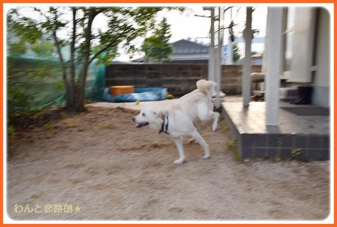 f:id:yasukazu01:20140807221917j:image