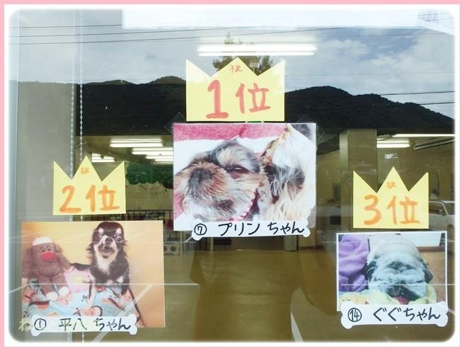 f:id:yasukazu01:20140808202552j:image