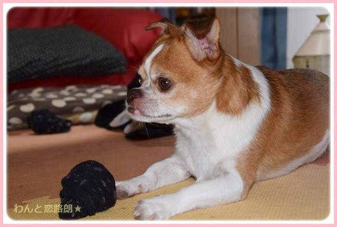 f:id:yasukazu01:20140809212155j:image