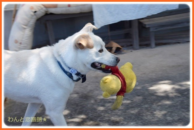 f:id:yasukazu01:20140810222805j:image