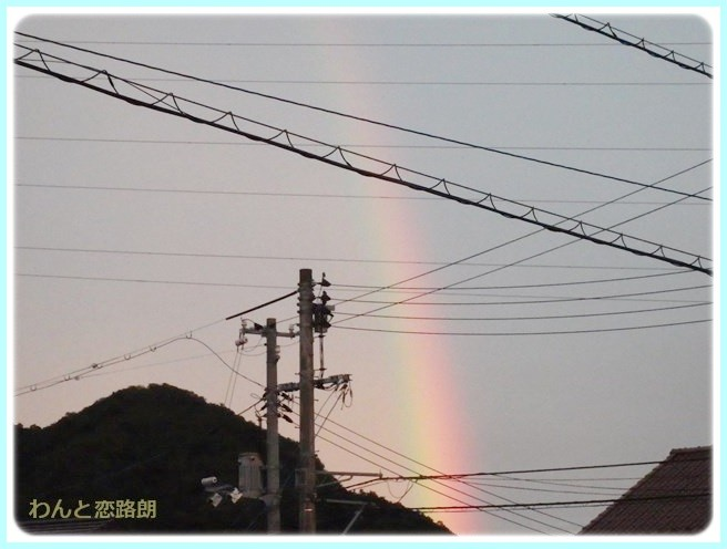 f:id:yasukazu01:20140812204952j:image