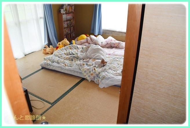 f:id:yasukazu01:20140816214956j:image