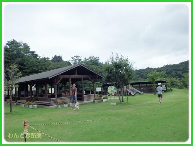 f:id:yasukazu01:20140817204423j:image