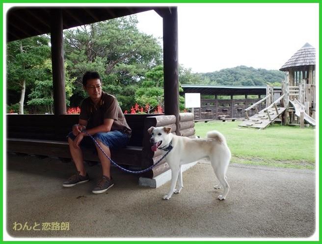 f:id:yasukazu01:20140817204614j:image