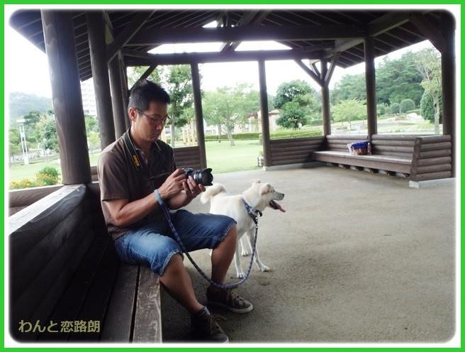 f:id:yasukazu01:20140817205233j:image