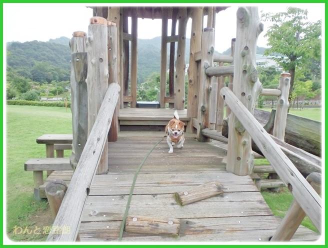 f:id:yasukazu01:20140817205808j:image
