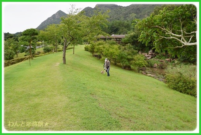 f:id:yasukazu01:20140817205959j:image