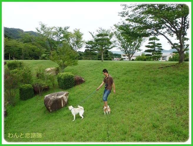 f:id:yasukazu01:20140818214122j:image
