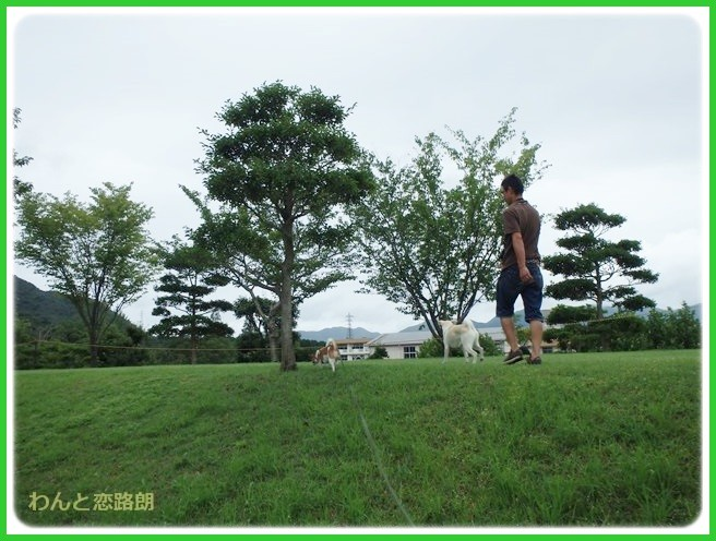 f:id:yasukazu01:20140818214246j:image