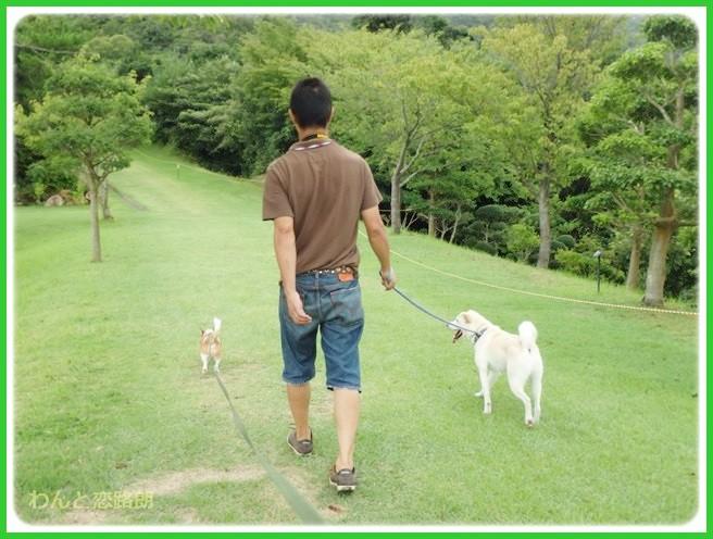 f:id:yasukazu01:20140818214339j:image