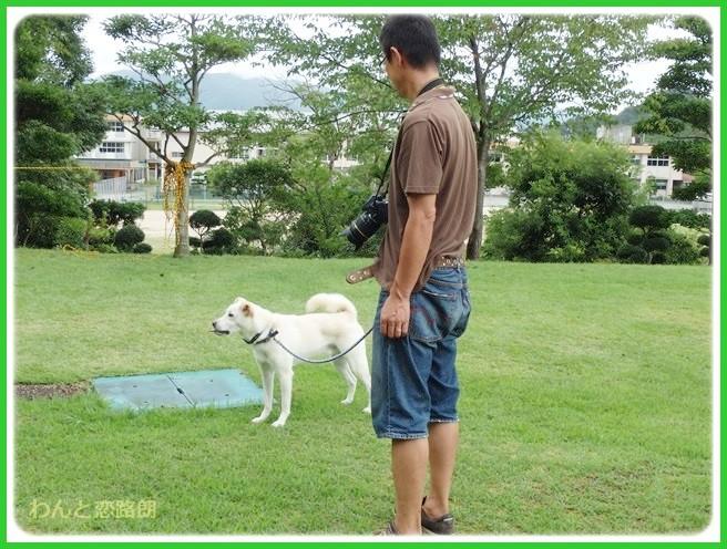 f:id:yasukazu01:20140818221108j:image
