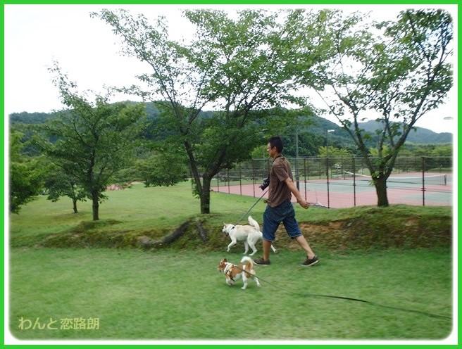 f:id:yasukazu01:20140820195438j:image