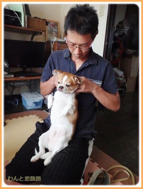 f:id:yasukazu01:20140825202748j:image