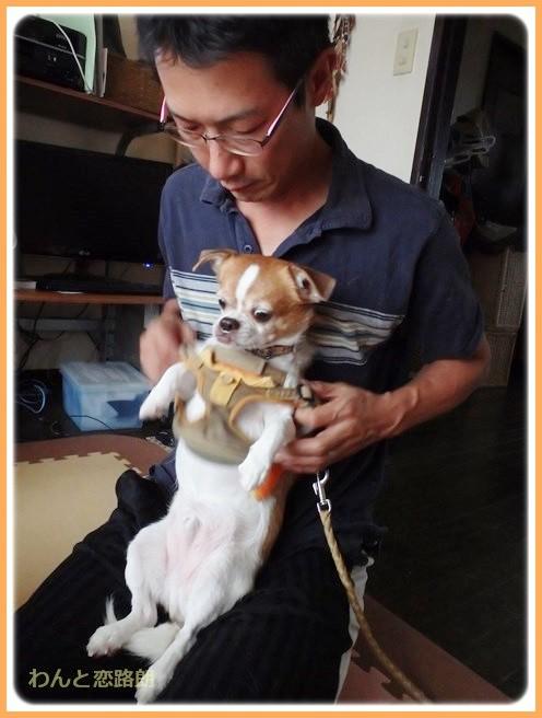 f:id:yasukazu01:20140825203104j:image