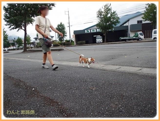 f:id:yasukazu01:20140825204705j:image