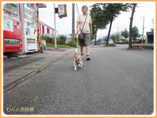f:id:yasukazu01:20140825204808j:image