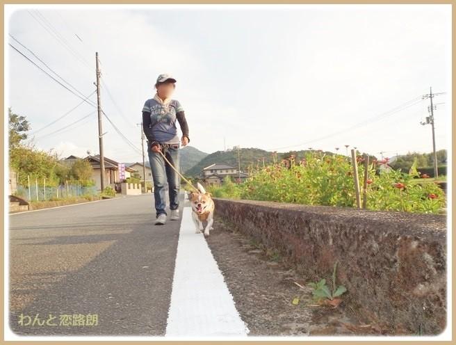 f:id:yasukazu01:20140830202947j:image