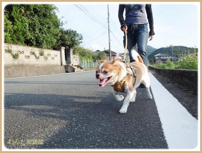 f:id:yasukazu01:20140830203201j:image