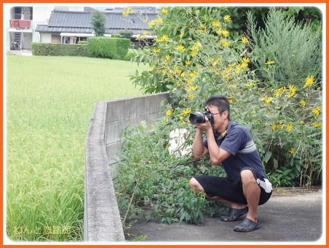 f:id:yasukazu01:20140901213052j:image