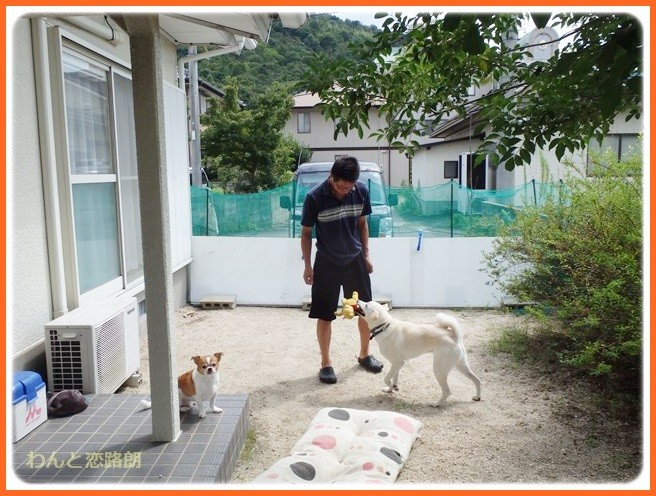 f:id:yasukazu01:20140902101119j:image