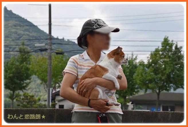 f:id:yasukazu01:20140903202326j:image