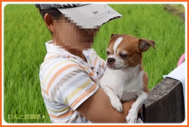 f:id:yasukazu01:20140903202455j:image