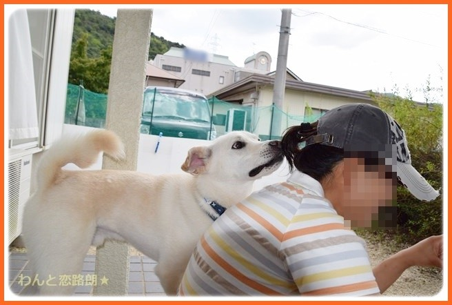 f:id:yasukazu01:20140903203836j:image