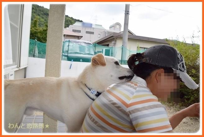 f:id:yasukazu01:20140903203910j:image