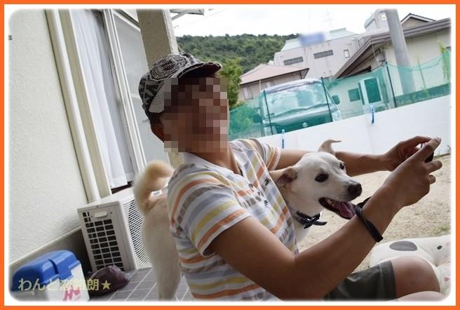 f:id:yasukazu01:20140903204038j:image