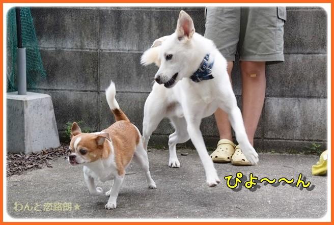 f:id:yasukazu01:20140904202021j:image