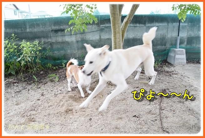 f:id:yasukazu01:20140904203233j:image