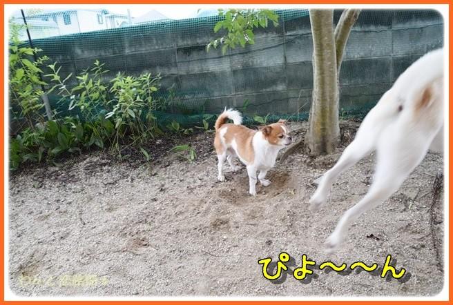 f:id:yasukazu01:20140904203314j:image