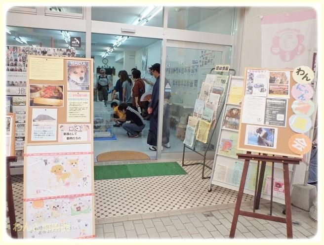 f:id:yasukazu01:20140907212235j:image