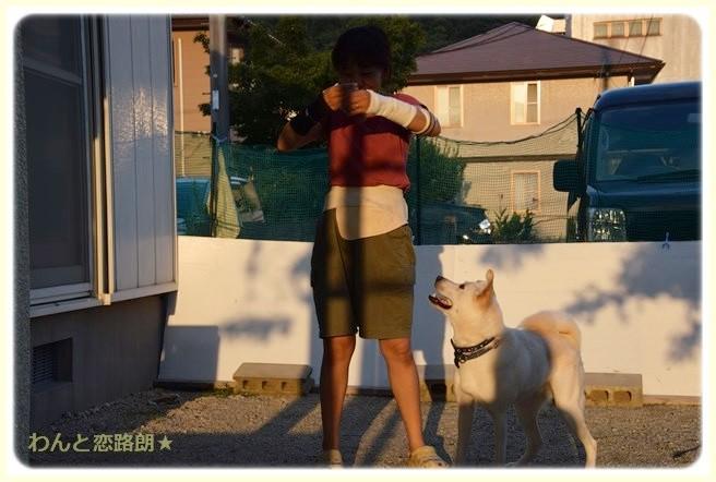 f:id:yasukazu01:20140910204015j:image