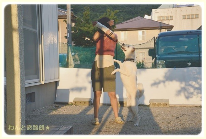 f:id:yasukazu01:20140910204521j:image
