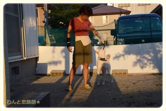 f:id:yasukazu01:20140910205209j:image