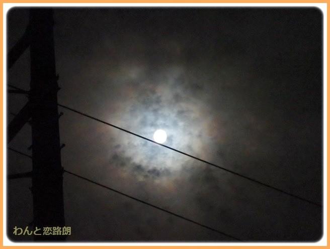 f:id:yasukazu01:20140911202258j:image