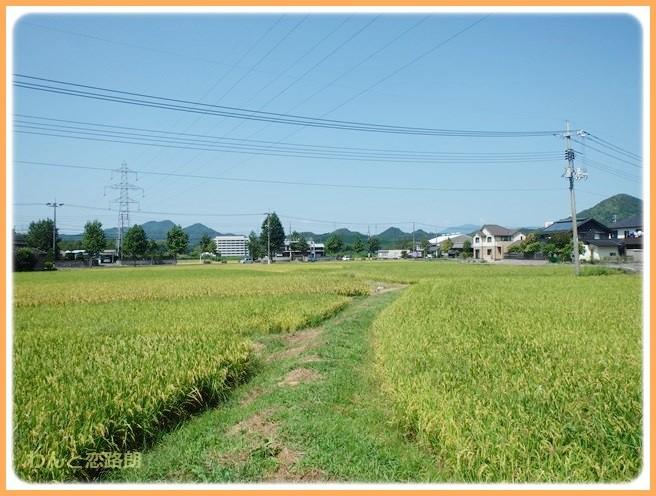 f:id:yasukazu01:20140912223630j:image